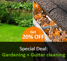 Book Gardening + Gutter Cleaning = 20% off