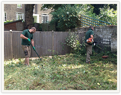 Garden Clean Up in London