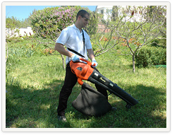 Garden Clean Up London